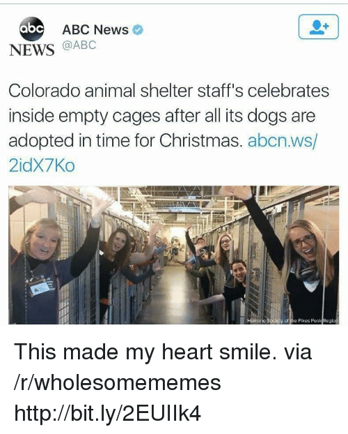 Abc, Christmas, and Dogs: abc ABC Newso  NEWS @ABC  Colorado animal shelter staff's celebrates  inside empty cages after all its dogs are  adopted in time for Christmas. abcn.ws/  2idX7Ko  y of the Pikes Peak Region This made my heart smile. via /r/wholesomememes http://bit.ly/2EUIIk4