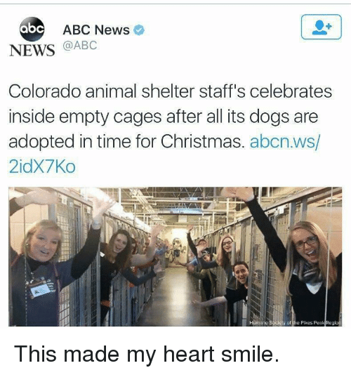 Abc, Christmas, and Dogs: abc ABC Newso  NEWS @ABC  Colorado animal shelter staff's celebrates  inside empty cages after all its dogs are  adopted in time for Christmas. abcn.ws/  2idX7Ko  y of the Pikes Peak Region This made my heart smile.