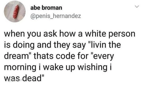 "Broman: abe broman  @penis_hernandez  when you ask how a white person  is doing and they say ""livin the  dream"" thats code for ""every  morning i wake up wishing i  was dead"""