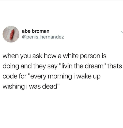 "Broman: abe broman  @penis_hernandez  when you ask how a white person is  doing and they say ""livin the dream"" thats  code for ""every morning i wake up  wishing i was dead"