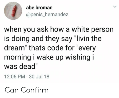 "Penis, White, and How: abe broman  @penis_hernandez  when you ask how a white person  is doing and they say ""livin the  dream"" thats code for ""every  morning i wake up wishing i  was dead""  12:06 PM 30 Jul 18 Can Confirm"