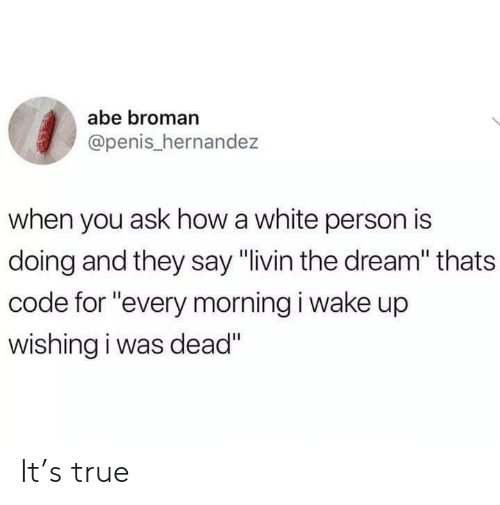 "Broman: abe broman  @penis_hernandez  when you ask how a white person is  doing and they say ""livin the dream"" thats  code for ""every morning i wake up  wishing i was dead"" It's true"