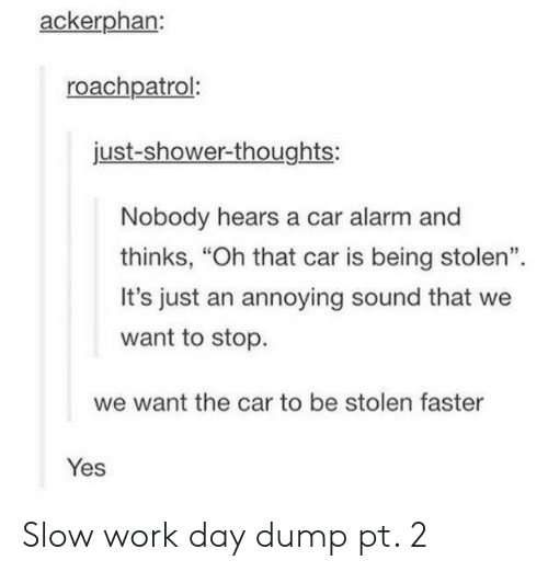 """Shower, Shower Thoughts, and Work: ackerphan:  roachpatrol:  just-shower-thoughts:  Nobody hears a car alarm and  thinks, """"Oh that car is being stolen"""".  It's just an annoying sound that we  want to stop.  we want the car to be stolen faster  Yes Slow work day dump pt. 2"""