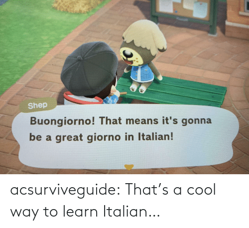 Thats: acsurviveguide:  That's a cool way to learn Italian…