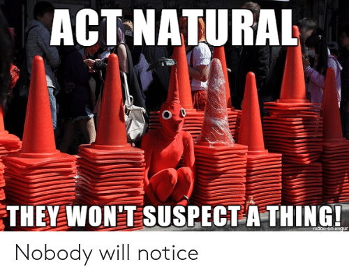 Imgur, Act, and Will: ACT NATURAL  O 0  THEY WON'T SUSPECT A THING!  maoe on imgur Nobody will notice