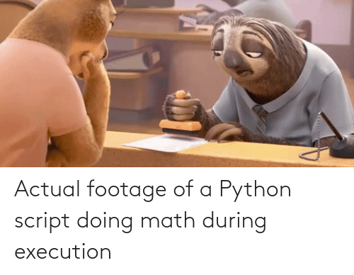 script: Actual footage of a Python script doing math during execution