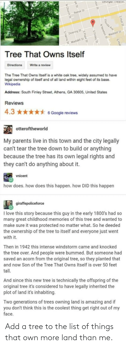 list: Add a tree to the list of things that own more land than me.