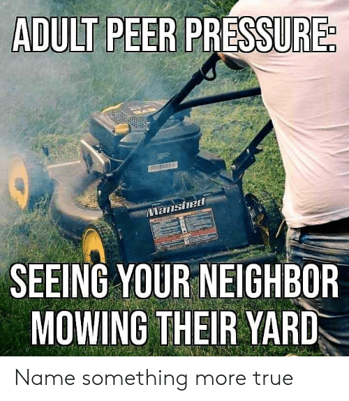 True, Name, and Adult: ADULT PEER PRE  ished  SEEING YOUR NEIGHBOR  MOWING THEIR YARD Name something more true