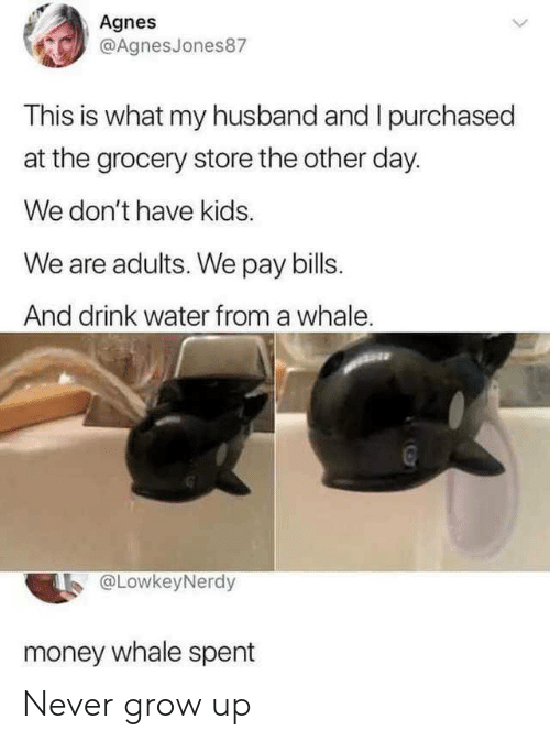 Money, Kids, and Water: Agnes  @AgnesJones87  This is what my husband and I purchased  at the grocery store the other day.  We don't have kids.  We are adults. We pay bills.  And drink water from a whale.  @LowkeyNerdy  money whale spent Never grow up