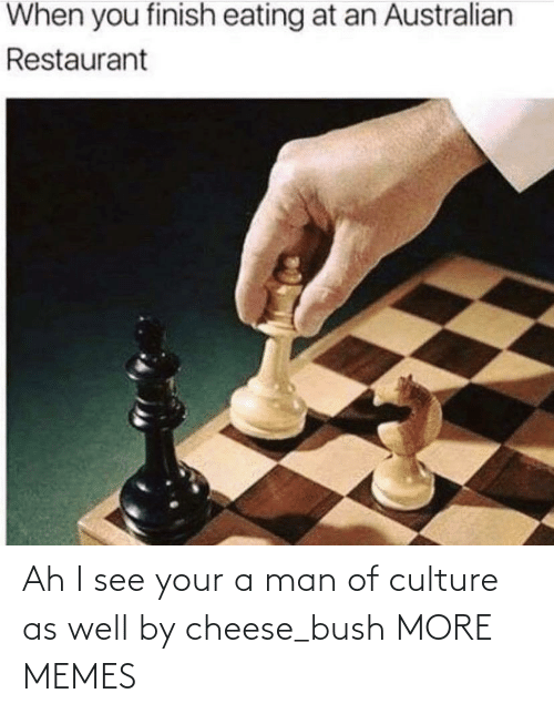 culture: Ah I see your a man of culture as well by cheese_bush MORE MEMES