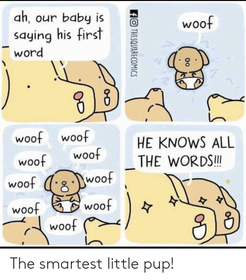 woof: ah, our baby is  saying his first  word  O woof  2  웅  woof woof  HE KNOWS ALL  woot THE WORDS  woof  woo  woof  woof  수  从13  r、( woof The smartest little pup!