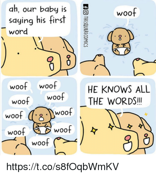 woofing: ah, our baby is  saying his first  word  woof  woof woof  woof woof  HE KNOWS ALL  THE WORDS!!  woof  Woo  woof  WOOt  woof  woo https://t.co/s8fOqbWmKV