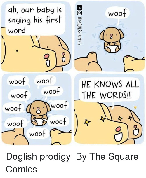 Dank, Prodigy, and Square: ah, our baby is  saying his first  word  woof  woof woof  woof woof  HE KNOWS ALL  THE WORDS!  woof  woof  woof  woof  rWO0 Doglish prodigy.  By The Square Comics