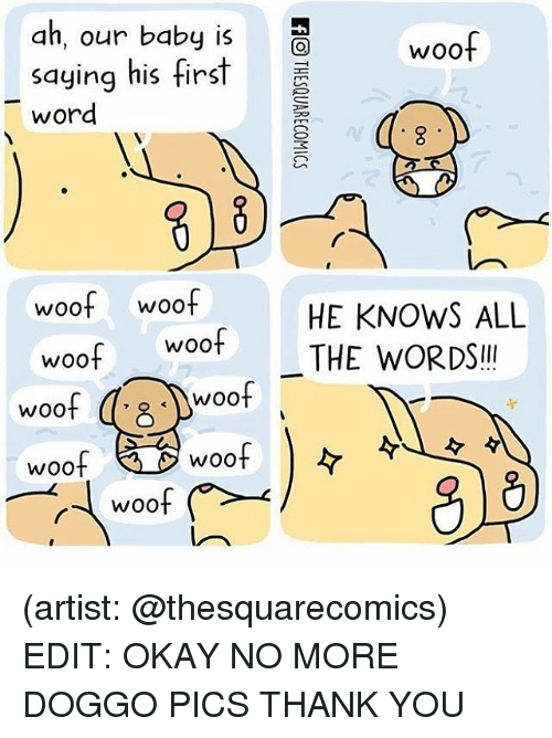 woofing: ah, our baby is  woof  saying his first  word  woof woof  HE KNOWS ALL  Woot THE WORDS  woof  woof  woof  woof  WOO  WOO (artist: @thesquarecomics) EDIT: OKAY NO MORE DOGGO PICS THANK YOU