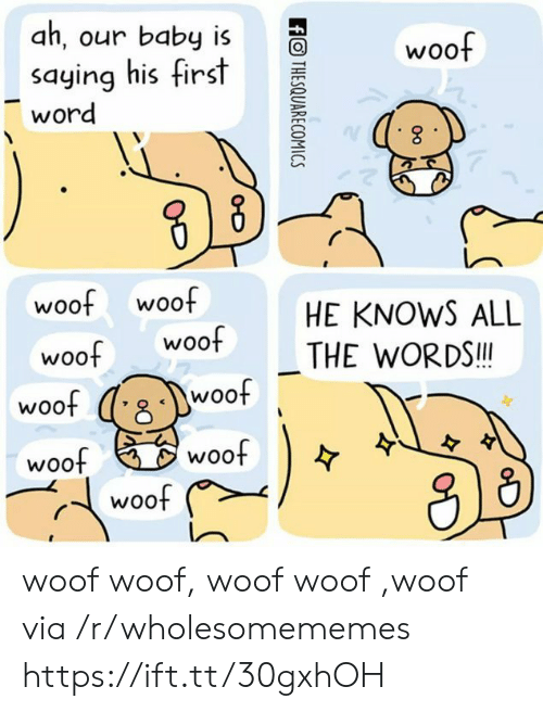woof: ah, our baby is  woof  saying his first  word  woof woof  woof  HE KNOWS ALL  woof  THE WORDS!!  woof  woof  woof  woof  woof  ffOTHESQUARECOMICS woof woof, woof woof ,woof via /r/wholesomememes https://ift.tt/30gxhOH