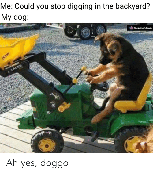 Ah: Ah yes, doggo