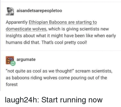 "Apparently, Club, and Scream: aisandetsarepeopletoo  Apparently Ethiopian Baboons are starting to  domesticate wolves, which is giving scientists new  insights about what it might have been like when early  humans did that. That's cool pretty cool!  argumate  t quite as cool as we thought!"" scream scientist  as baboons riding wolves come pouring out of the  forest laugh24h:  Start running now"