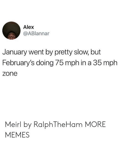 Dank, Memes, and Target: Alex  @ABlannar  January went by pretty slow, but  February's doing 75 mph in a 35 mph  zone Meirl by RalphTheHam MORE MEMES