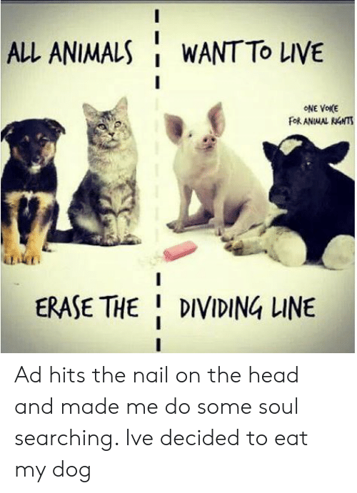 Animals, Head, and Live: ALL ANIMALS  WANT TO LIVE  ONE VOIKE  FORANMAL RNTS  DT  ERASE THE DIVIDING LINE Ad hits the nail on the head and made me do some soul searching. Ive decided to eat my dog