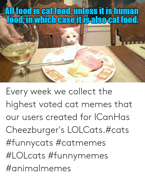 Cats, Food, and Memes: ALl food is cat food, unless it is human  food in which case it isalso cat food.  TE Every week we collect the highest voted cat memes that our users created for ICanHas Cheezburger's LOLCats.#cats #funnycats #catmemes #LOLcats #funnymemes #animalmemes