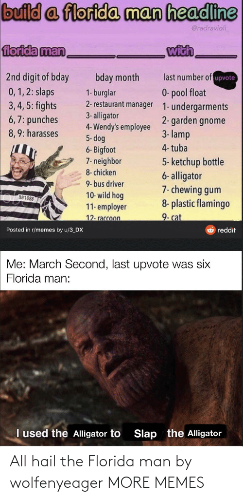 Florida: All hail the Florida man by wolfenyeager MORE MEMES