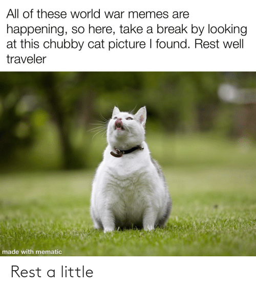 All Of: All of these world war memes are  happening, so here, take a break by looking  at this chubby cat picture I found. Rest well  traveler  made with mematic Rest a little