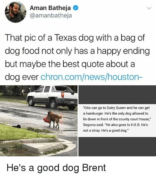 "courting: Aman Batheja  @amanbatheja  That pic of a Texas dog with a bag of  dog food not only has a happy ending  but maybe the best quote about a  dog ever chron.com/news/houston-  ""Otis can go to Dairy Queen and he can get  a hamburger. He's the only dog allowed to  lie down in front of the county court house,""  Segovia said. ""He also goes to H.E.B. He's  not a stray. He's a good dog."" He's a good dog Brent"