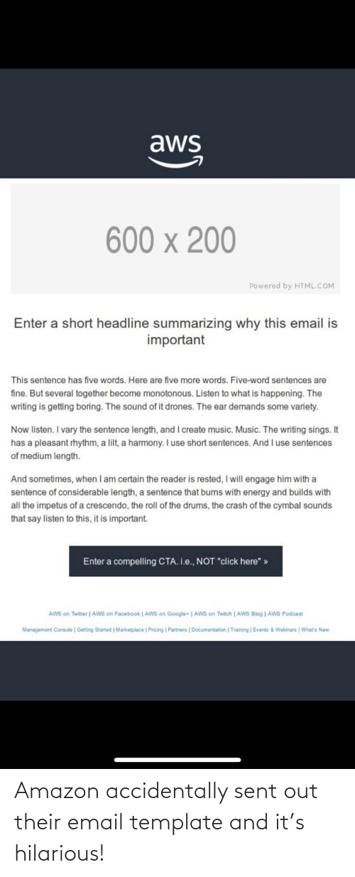 template: Amazon accidentally sent out their email template and it's hilarious!