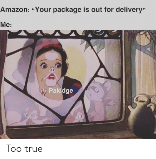 """package: Amazon: """"Your package is out for delivery""""  Me:  Pakidge Too true"""