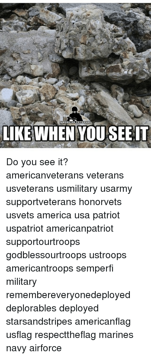 America, Memes, and When You See It: AMERICAN VETERANS  LIKE WHEN YOU SEE IT Do you see it? americanveterans veterans usveterans usmilitary usarmy supportveterans honorvets usvets america usa patriot uspatriot americanpatriot supportourtroops godblessourtroops ustroops americantroops semperfi military remembereveryonedeployed deplorables deployed starsandstripes americanflag usflag respecttheflag marines navy airforce