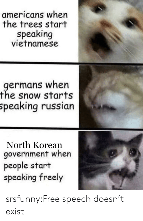 Tumblr, Blog, and Free: americans when  the trees start  speaking  vietnamese  .germans when  the snow starts  Speaking russian  North Korean  government when  people start  speaking freely srsfunny:Free speech doesn't exist