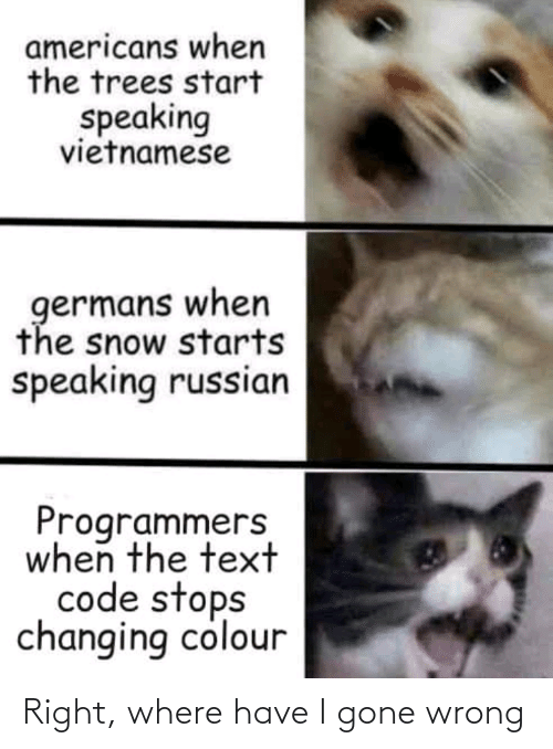 When The: americans when  the trees start  speaking  vietnamese  germans when  the snow starts  speaking russian  Programmers  when the text  code stops  changing colour Right, where have I gone wrong