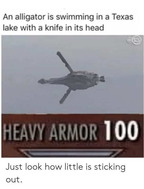 Head, Alligator, and Texas: An alligator is swimming in a Texas  lake with a knife in its head  HEAVY ARMOR 100 Just look how little is sticking out.