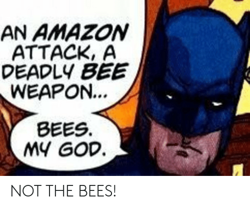 Amazon, God, and Bees: AN AMAZON  ATTACK, A  DEADLY BEE  WEAPON...  BEES  MY GOD NOT THE BEES!