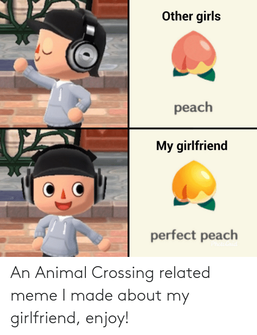 Girlfriend: An Animal Crossing related meme I made about my girlfriend, enjoy!