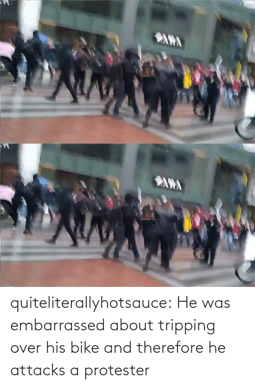 Gif, Tumblr, and Blog: ANA   ANA quiteliterallyhotsauce:   He was embarrassed about tripping over his bike and therefore he attacks a protester