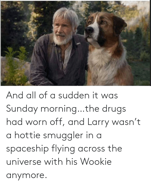 spaceship: And all of a sudden it was Sunday morning…the drugs had worn off, and Larry wasn't a hottie smuggler in a spaceship flying across the universe with his Wookie anymore.