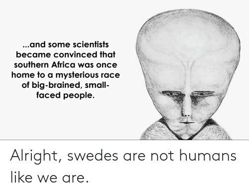 Faced People: ...and some scientists  became convinced that  southern Africa was once  home to a mysterious race  of big-brained, small-  faced people. Alright, swedes are not humans like we are.