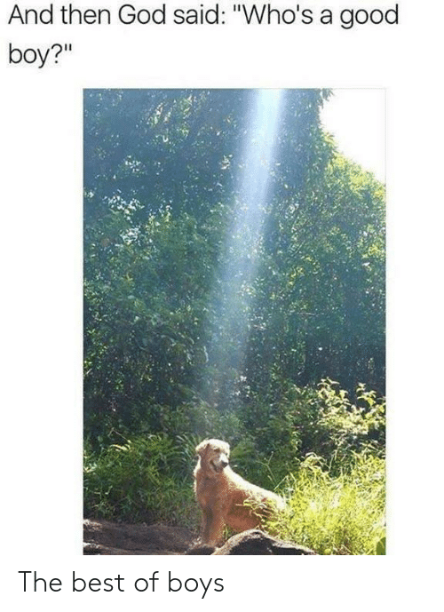 """God, Best, and Good: And then God said: """"Who's a good  boy?"""" The best of boys"""