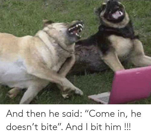 """then: And then he said: """"Come in, he doesn't bite"""". And I bit him !!!"""