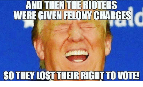 Memes, 🤖, and Charge: AND THEN THE RIOTERS  WERE GIVEN FELONY CHARGES  SO THEY LOST THEIR TO VOTE!