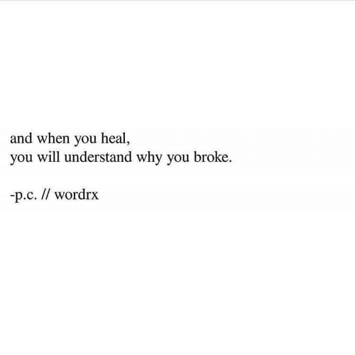 Why, Will, and You: and when you heal,  you will understand why you broke  p.c. // wordrx