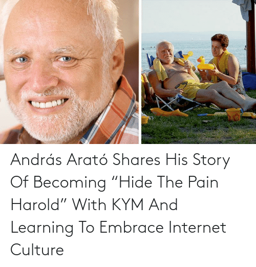 "culture: András Arató Shares His Story Of Becoming ""Hide The Pain Harold"" With KYM And Learning To Embrace Internet Culture"