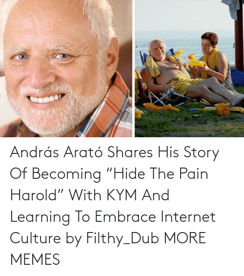 """Internet: András Arató Shares His Story Of Becoming """"Hide The Pain Harold"""" With KYM And Learning To Embrace Internet Culture by Filthy_Dub MORE MEMES"""