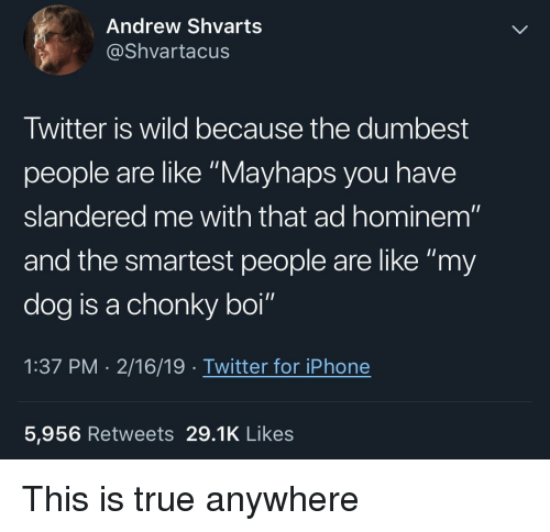 """Mayhaps: Andrew Shvarts  @Shvartacus  Twitter is wild because the dumbest  people are like """"Mayhaps you have  slandered me with that ad hominem""""  and the smartest people are like """"my  dog is a chonky boi""""  1:37 PM . 2/16/19 . Twitter for iPhone  5,956 Retweets 29.1K Likes This is true anywhere"""