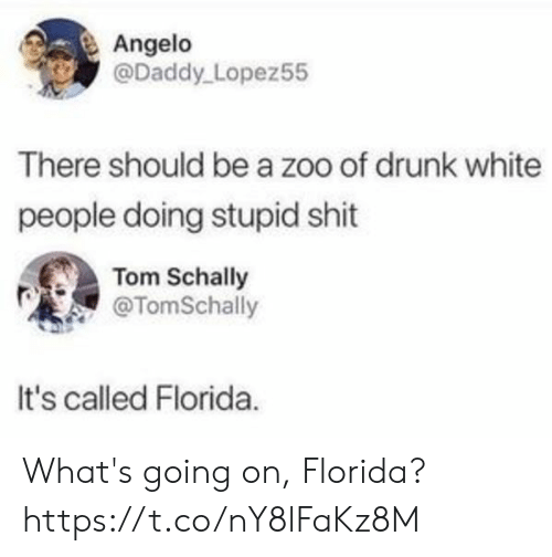 Drunk, Shit, and White People: Angelo  @Daddy Lopez55  There should be a zoo of drunk white  people doing stupid shit  Tom Schally  @TomSchally  It's called Florida. What's going on, Florida? https://t.co/nY8lFaKz8M
