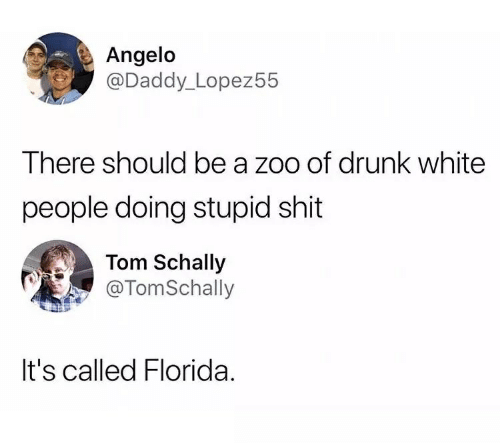 Drunk, White People, and Florida: Angelo  @Daddy_Lopez55  There should be a zoo of drunk white  people doing stupid shit  Tom Schally  @TomSchally  It's called Florida.