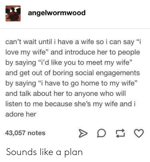 "to-go-home: angelwormwood  can't wait until i have a wife soi can say ""i  love my wife"" and introduce her to people  by saying ""i'd like you to meet my wife""  and get out of boring social engagements  by saying ""i have to go home to my wife""  and talk about her to anyone who will  listen to me because she's my wife and i  adore her  43,057 notes  A Sounds like a plan"
