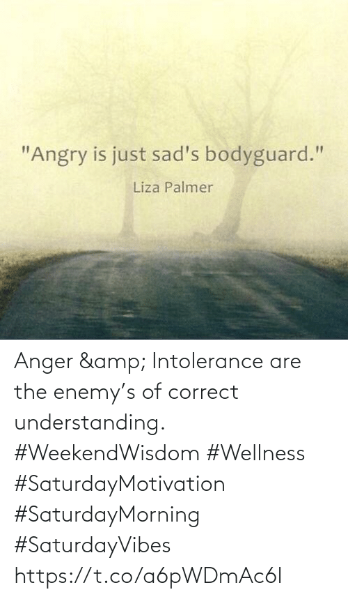 Love for Quotes: Anger & Intolerance are the enemy's of correct understanding.  #WeekendWisdom  #Wellness #SaturdayMotivation #SaturdayMorning #SaturdayVibes https://t.co/a6pWDmAc6I