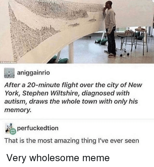 Wholesome Meme: aniggainrio  After a 20-minute flight over the city of New  York, Stephen Wiltshire, diagnosed with  autism, draws the whole town with only his  memory.  erfuckedtion  That is the most amazing thing I've ever seen Very wholesome meme